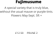 Fujimusume A special variety that is truly blue,  without the usual mauve or purple tints. Flowers May-Sept. 5ft +    £12.50     PRUNE 2
