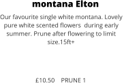 montana Elton Our favourite single white montana. Lovely  pure white scented flowers  during early  summer. Prune after flowering to limit size.15ft+    £10.50    PRUNE 1