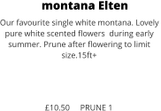 montana Elten Our favourite single white montana. Lovely  pure white scented flowers  during early  summer. Prune after flowering to limit size.15ft+    £10.50     PRUNE 1
