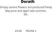Dorath Simply serene flowers are produced freely May-June and again late summer. 6ft.    £9.00      PRUNE 2