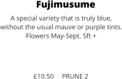 Fujimusume A special variety that is truly blue,  without the usual mauve or purple tints. Flowers May-Sept. 5ft +    £10.50     PRUNE 2