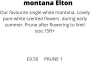 montana Elton Our favourite single white montana. Lovely  pure white scented flowers  during early  summer. Prune after flowering to limit size.15ft+    £9.50     PRUNE 1