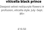 viticella black prince Deepest velvet red/purple flowers in profusion, viticella style. July -Sept. 8ft+    £10.50